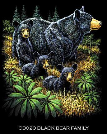 Black Bear Family.jpg