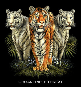 Tiger+Trio+copy.jpg