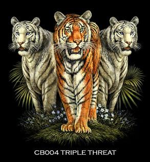 Tiger+Trio+copy.jpg