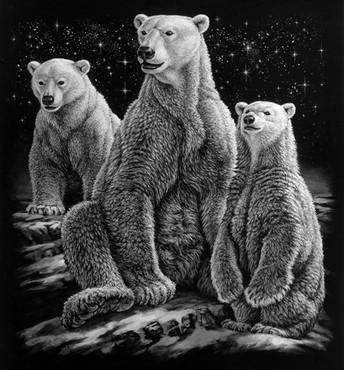 Cliffs+ColaPolar+Bears(bw)+copy.jpg