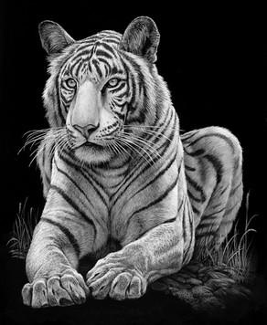 Cliffs+White+Tiger(bw)+copy+2.jpg