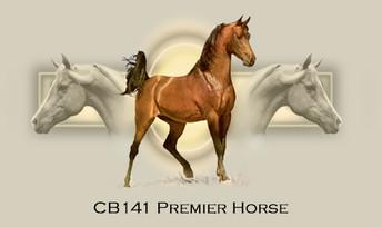 Premier+Horse.jpg