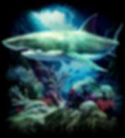 OC101 SHARK