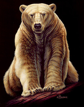 Cliff Bonamie Polar Bear