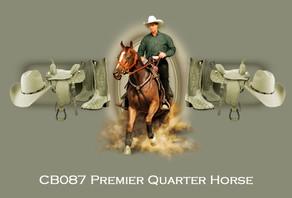 Premier+Quarter+Horse.jpg