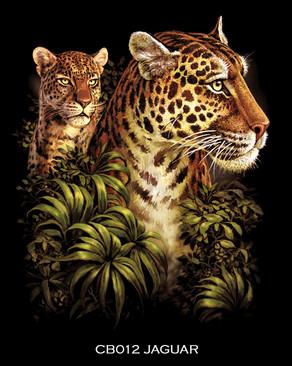 Jaguar+copy.jpg