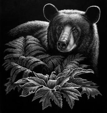 Black Bear w foliage.jpg