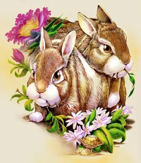 all+natural-bunnies.jpg