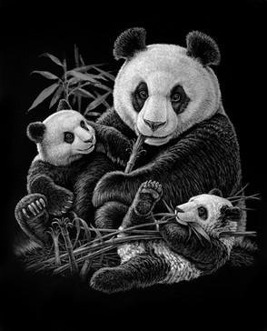 CLiffs+Panda(bw)+copy.jpg