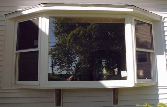 windows_8.jpg
