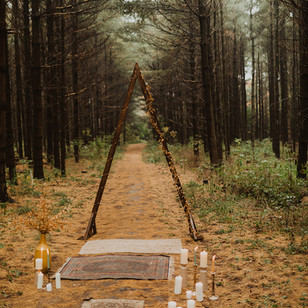 A Micro Wedding in the Woods at Guelph Lake