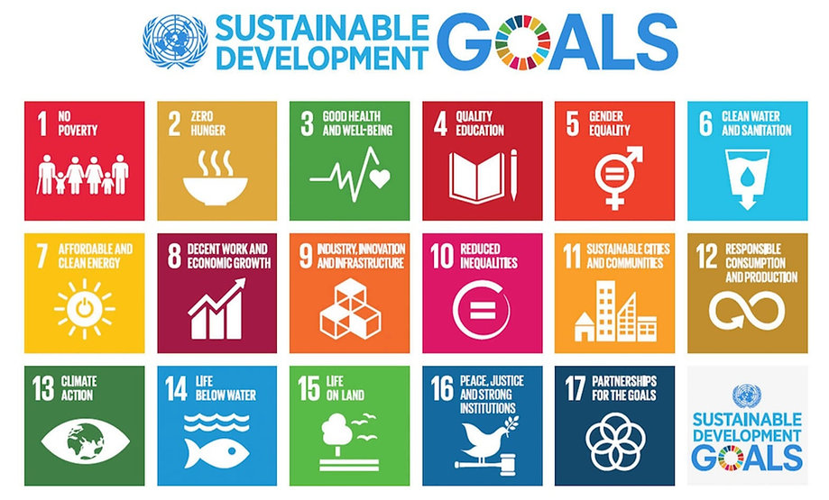 Sustainable_Development_Goals_edited_edi