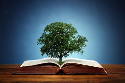 bigstock-Book-or-tree-of-knowledge-conc-79293445.jpg