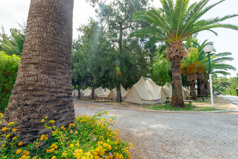 _zona roja acampada