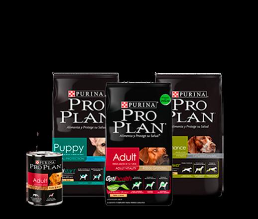 purina-pro-plan-productos-perros.png