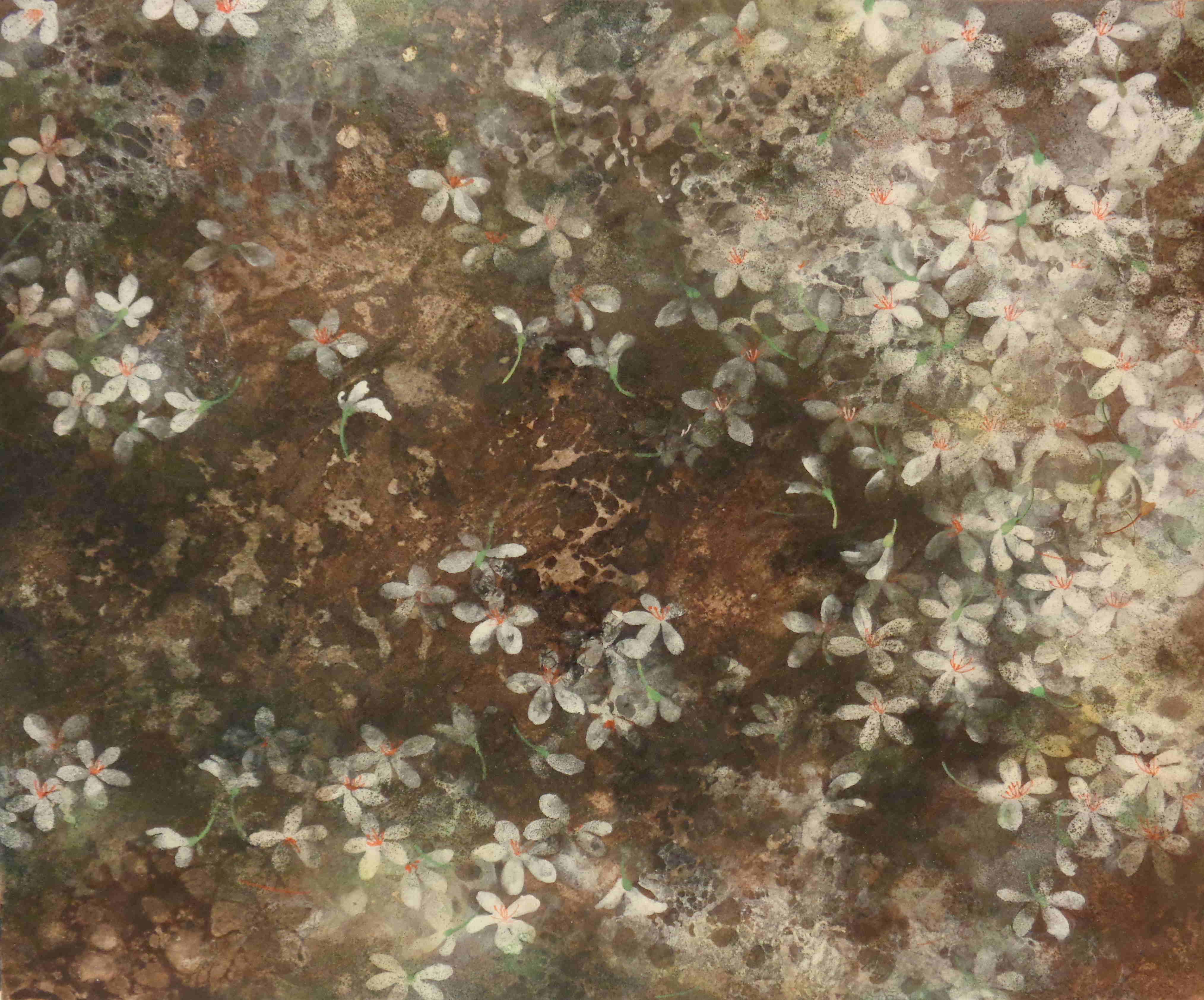 Neige de mai III-38x46cm/ 2017
