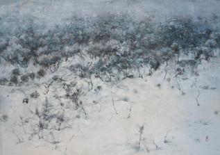 Serene - 50 x 70 cm / 2019