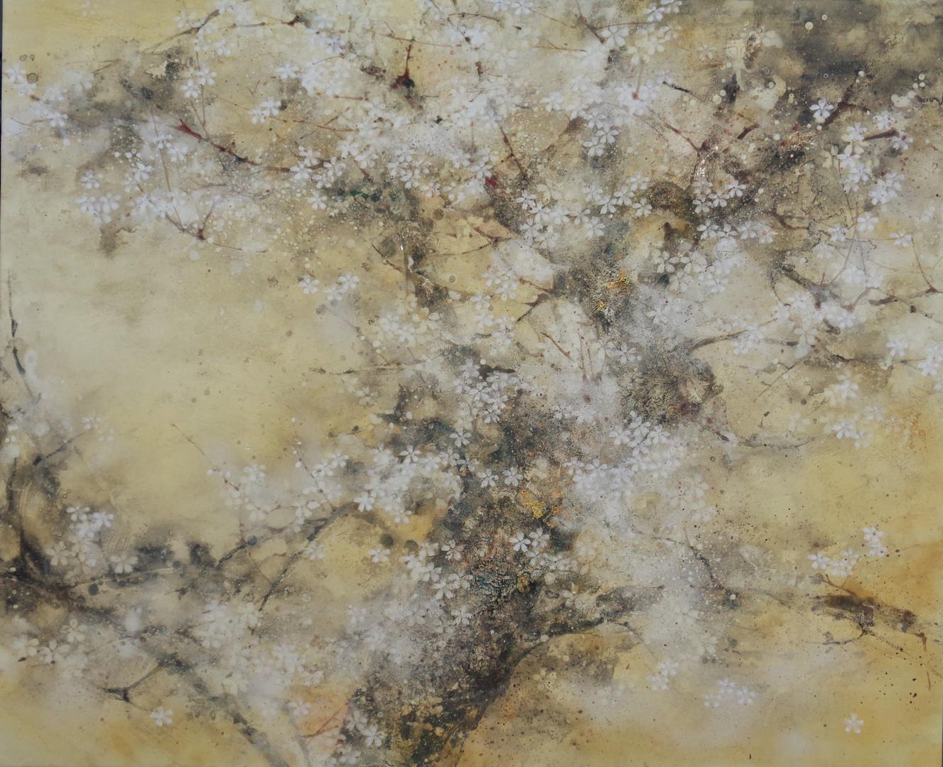 Saison du cerisier - 50 x 61 cm / 2018/