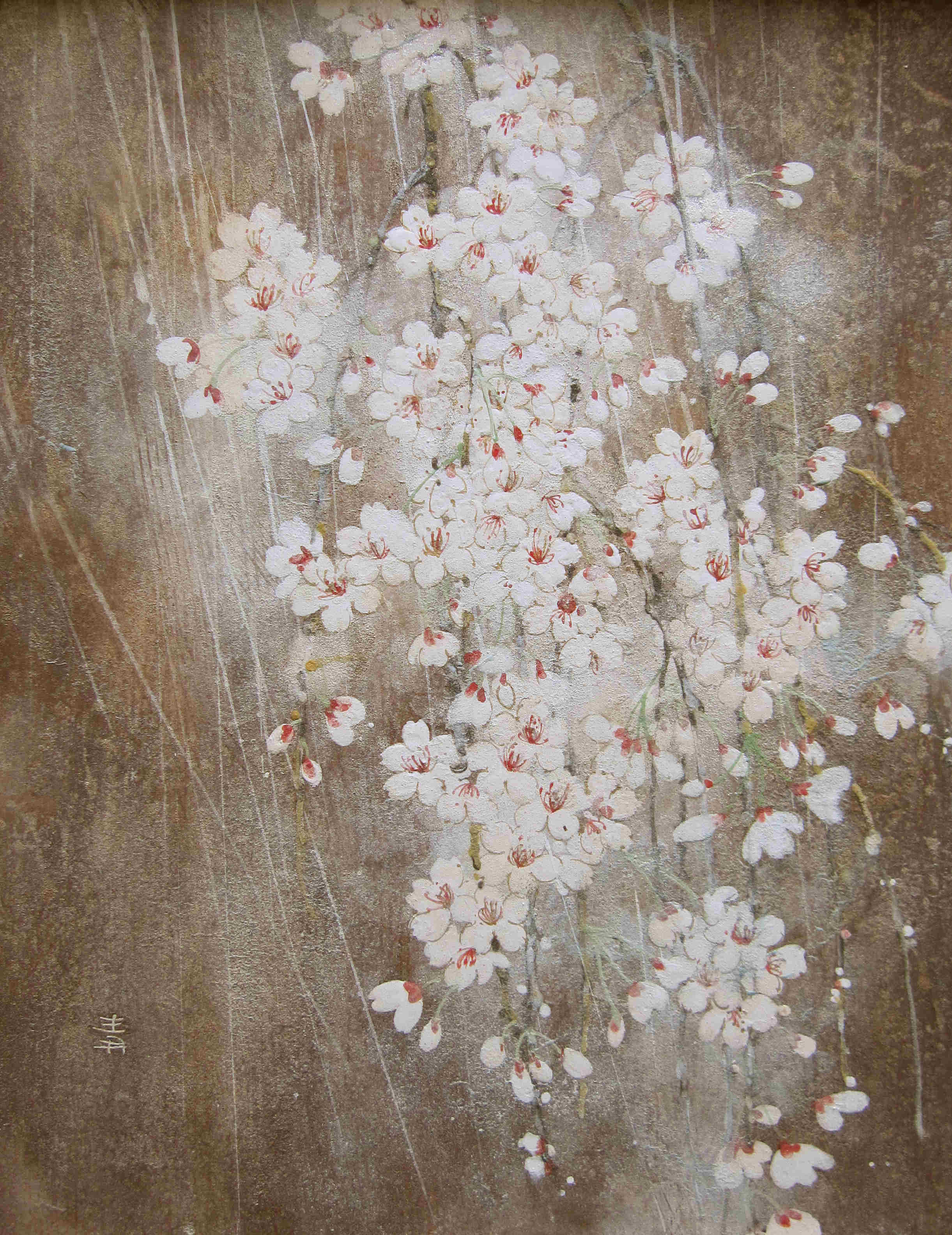 Cerisier - 35,4x27,4 cm / 2011