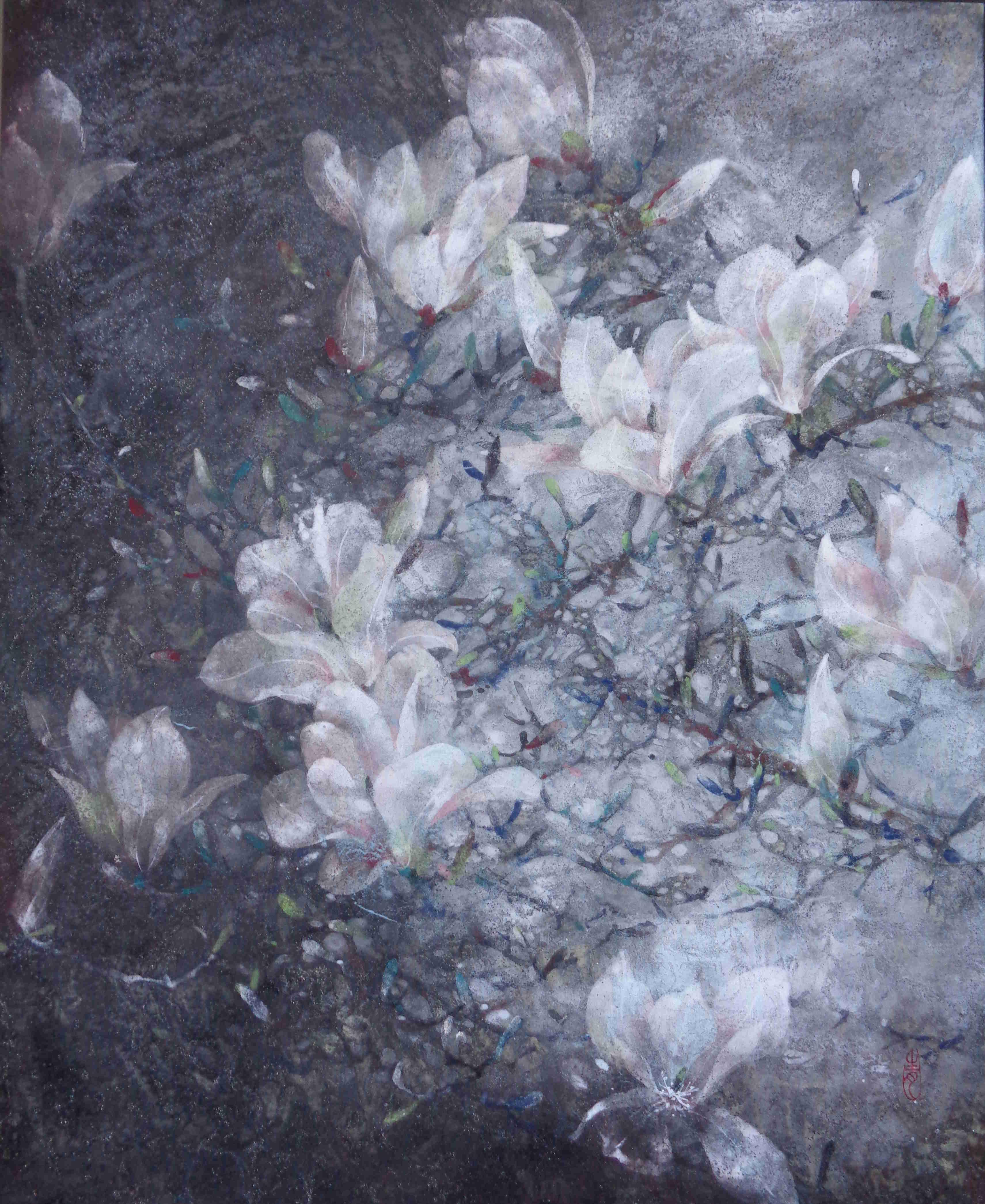 Magnolia-61x50cm