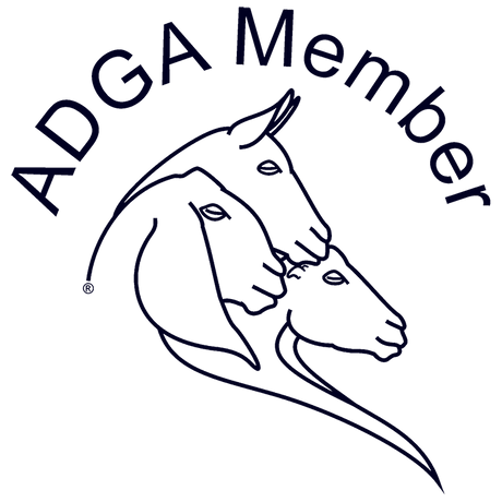 adga-member-only-logo-web-transparent.pn