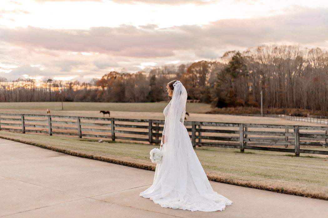 Wedding photography, bridal portrait, bride, wedding, engagement, portrait, groom, venue, photographer