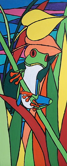 Red eyed tree frog by Kim Farr