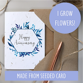 ANNIVERSARY CARD SEEDED