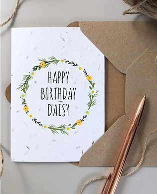 DAISY BIRTHDAY SEEDED 2.png