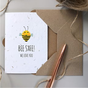BEE SAFE SEEDED 2.png