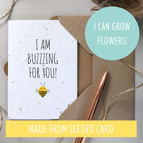 I am Buzzing for You - Bee Congratulations - Seeded Card