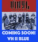 VH BLUE BUMPER.jpg