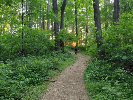 Why We Hike?