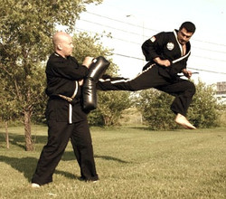 jump back kick