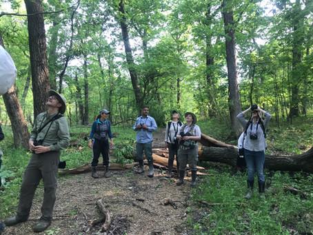 Birding Plum Creek Forest Preserve