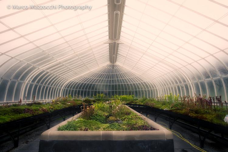 Glasgowu0027s Botanic Gardens