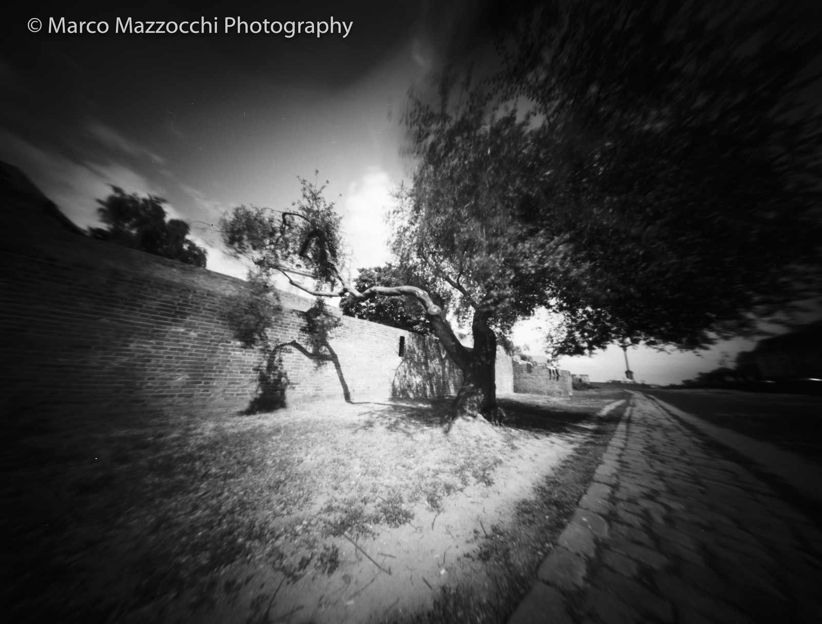 Marco Mazzocchi Photography - Professional photo services Scotland