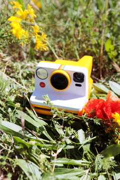 Yellow Camera-Lifestyle-Cecile_Boyer-_poulettemagique-1.jpg