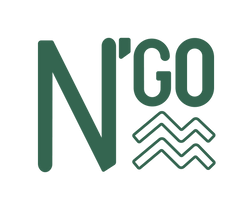 Logo N'go Shoes PNG.png