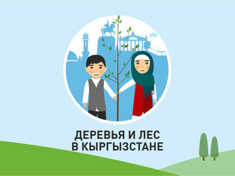 Facts about trees. Forests in Kyrgyz Republic.