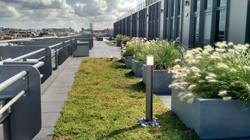 végétalisation terrasse 7e étage