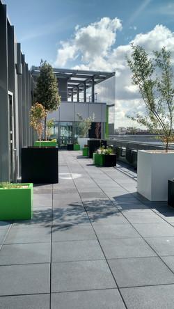 terrasse verte 6e étage