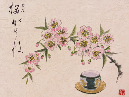 桜の力で「優美な女性」に