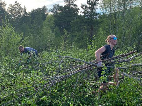 Dette blir Midt-Norges råeste sykkelpark