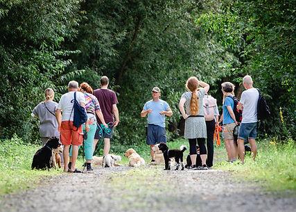 Hundeschule Gruppentraining