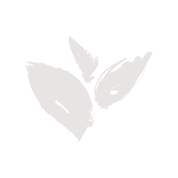 sassaras leaf