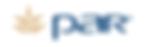 Par Tech Logo.png
