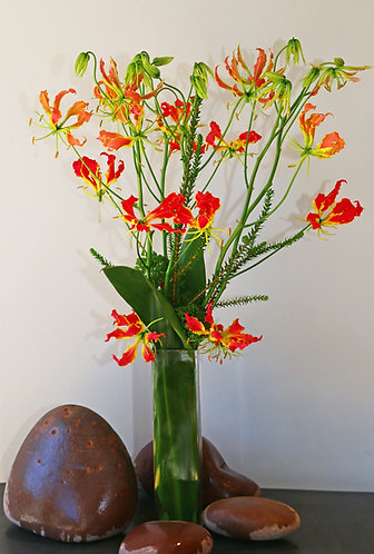 Large Arrangement in Tall Glass Vase (pictured: Gloryosia Lillies)