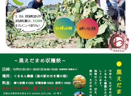 【黒えだまめ収穫祭】