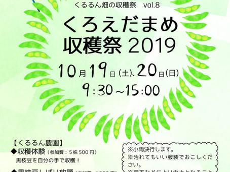 【イベント】黒枝豆収穫体験10/19(土),20(日)開催